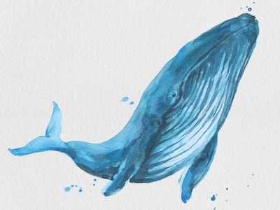 Free Blue Whale Watercolor Painting Clipart PNG transparent png png clipart underwater illustration beautiful painting drawing and sketching fish blue free downloads printable digital illustration clipart gogivo instantdownload free blue whale clipart blue whale watercolor clipart watercolor clipart free download free