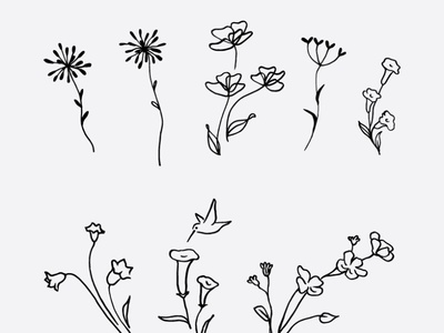 Free Wildflowers Vector Clip Art Hand Drawn Line Drawing line drawings free download free clipart instantdownload silhouette eps png svg flower vector vectorflowerillustration digitalillustration smoothlinedrawing gogivo floraldesign lineart wildflowerclipart freeflowerclipart flowerclipart flower line drawing