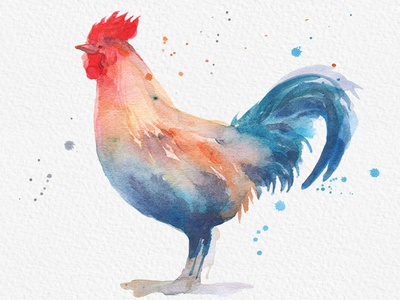 Rooster Watercolor Painting digital painting watercolor watercolor art how to draw gogivo download graphics artwork creative sketch drawing illustration digital watercolor clipart rooster png instantdownload watercolor painting rooster watercolor rooster clipart rooster