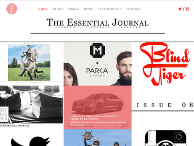 The Essential Journal Website newspaper design development website digital web