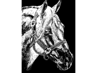 Black and White Illustration of Horse