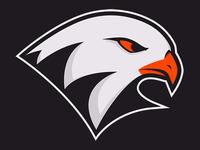 Wheaton Ballhawks