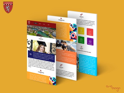 Cambridge Corporate University Site designart branding ui web illustration graphicdesign design