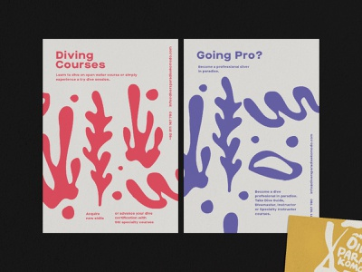 Marketing Kit; The 3rd flyer design flyer diving brochure mockup marketing campaign collateral marketing kit logo vector typography design branding