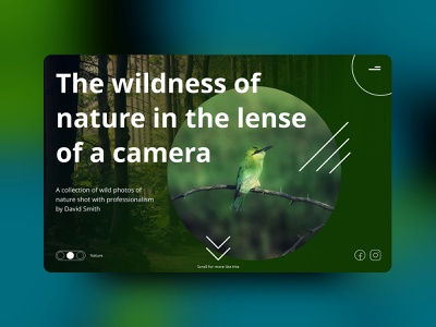 Homepage Photography Slideshow creative black art architecture animal abstract motiongraphics after effect figma design motion design animation web typography cute minimal adobe ux ui design app
