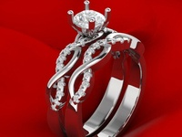 Luxury Engagement Twin Rings 3D Model