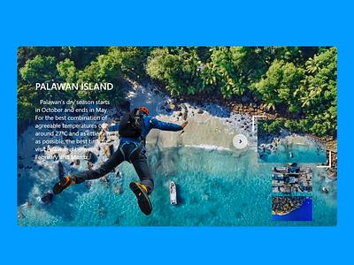 wingsuit Website after effect ux ui website xd design