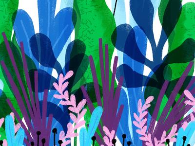 Magic Forest plants vegetation drawing ipad illustration doodle sketch