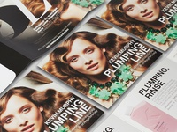 KEVIN.MURPHY plumping line brochure