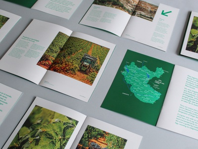 Dossier Manchuela winery branding editorial graphic design dossier brochure design