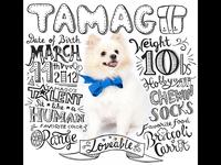 Happy 2nd Birthday, TAMAGO!!