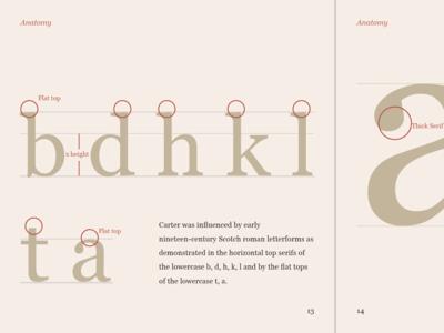 Type Specimen - Georgia typography georgia type specimen
