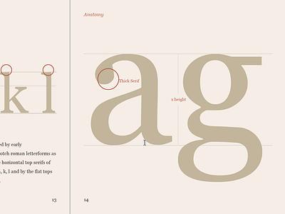 Type specimen - Georgia
