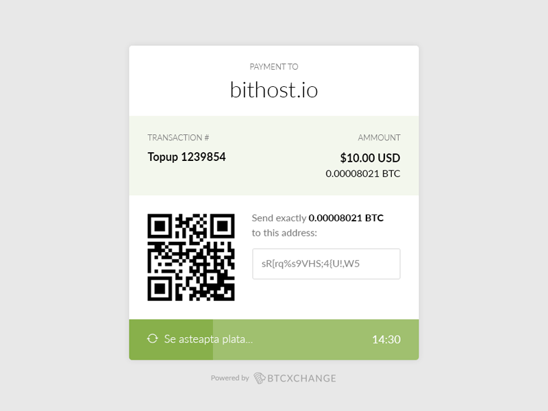 Payment gateway ux ui modern minimal transaction invoice loader gateway payment btc bitcoin