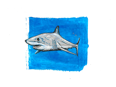 Mako Shark metallic acrylic mix media sealife ocean life nature illustration nature shark animal art animal illustration graphic art graphic painter painting paint illustration art illustrator illustration