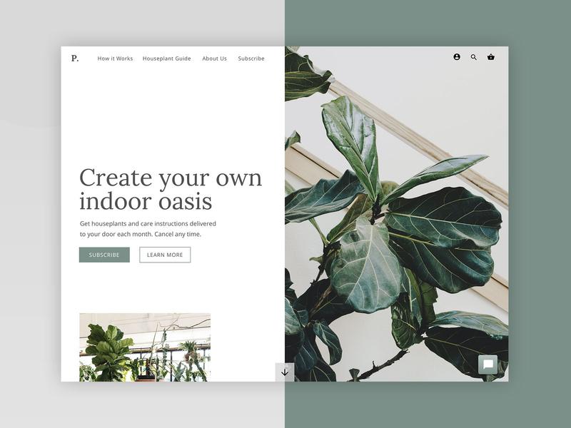 Houseplant Subscription Web Design