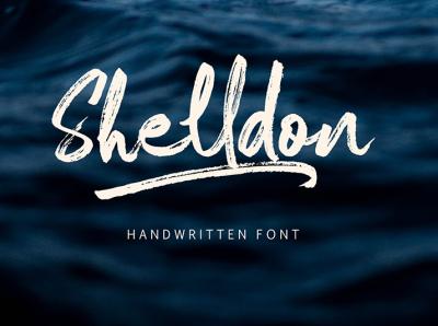 Shelldon Dry Brush Font creative portfolio modern design rustic branding logo handlettering dry brush brush
