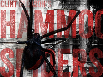 Hammockspiders Book Cover  horror book cover spider