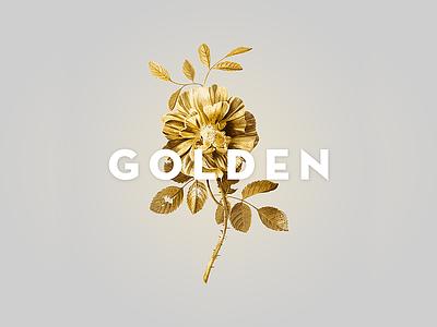 Golden gold flower the brahms