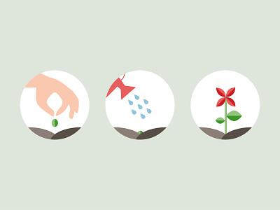 Planting process stem flower gardening grow soil watering can water garden seed plant