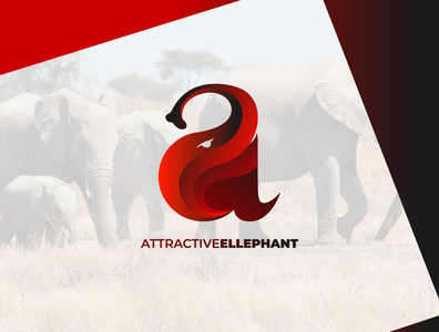 Attractive Elephant Logo Concept
