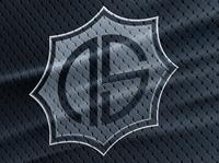 NS Team Logo Concept and Mockup