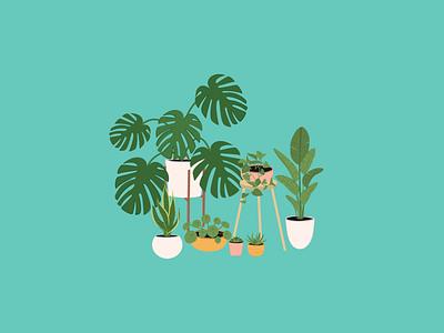 Indoor Plant Illustration clip art illustrations house plants plant illustrations digitalart digital illustration indoor plants