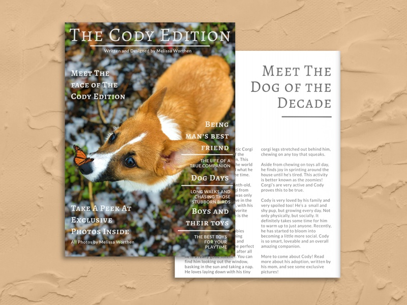 Pet Magazine photography photoshop forfun dog corgi pet adobexd design magazine