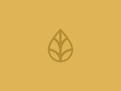 Brandi Branding yellow lines icons leaf minimal yoga herbalist