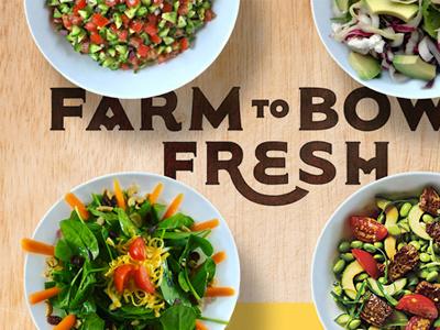 Farm to Bowl Fresh farm bowl fresh type typography organic salad woodgrain