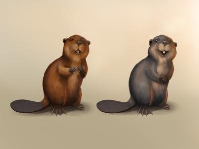 Csob - Beaver