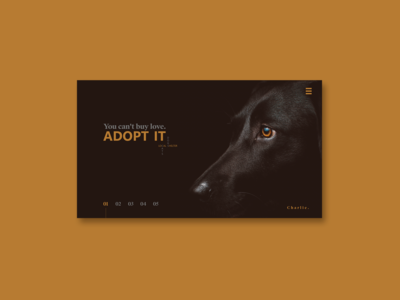 Minimal Web Design - Local Shelter