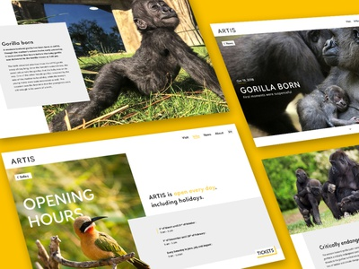 Artis - Website Pt.1 visual design graphic design website ui design ui webdesign
