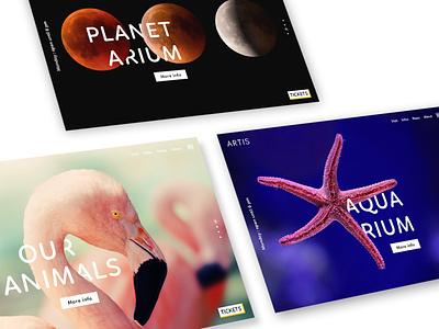 Artis - Website Pt.2 website visual design webdesign graphic design ui design ui