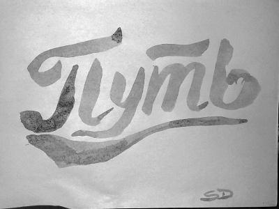 PATH calligraphy branding logo typography logotype handlettering stasdodesign wordmark script lettering hand drawn calligraphy