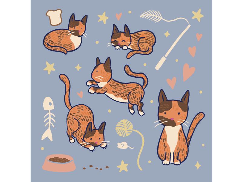 Cat doodles cat digital drawing procreate art procreate design drawing illustration art