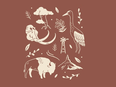On the Plains design bison animals hand drawn vector procreate art graphic design procreate nature illustration art