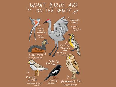 Bird shirt graphic animals birds graphic design procreate procreate art drawing nature illustration art