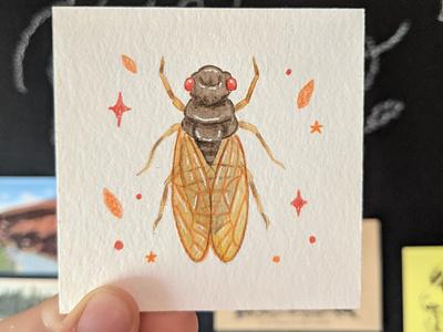Watercolor cicada watercolor painting insect watercolor hand drawn drawing nature illustration art