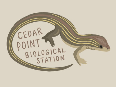 Race runner lizard sticker digital art sticker procreate drawing nature illustration art