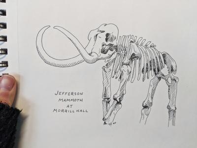 Jefferson Mammoth