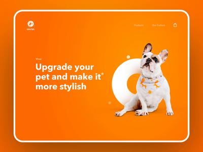 AstroPets | Store Design