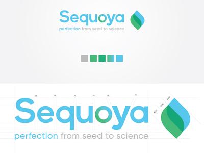 Sequoya Logo Design