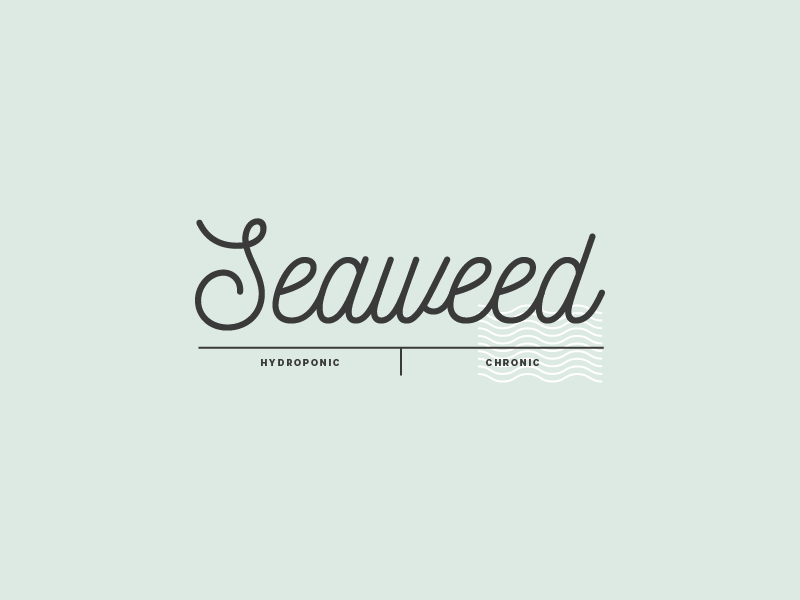 Seaweed 01