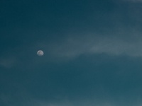 Moonlight on Bleu