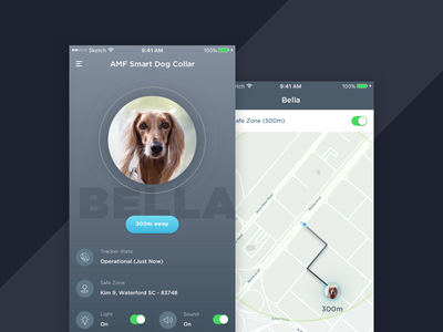 Pet Tracking Smart Coller map design dog find tracking lost pet ios ui