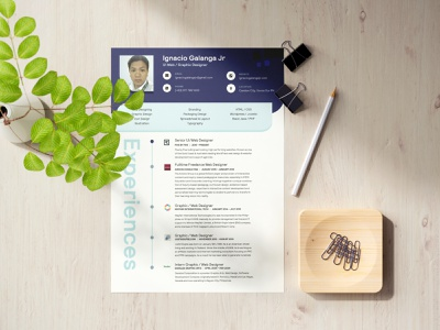 Curriculum Vitae cv resume template cv cv design