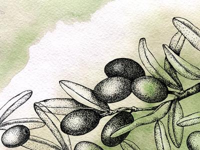 olivescard