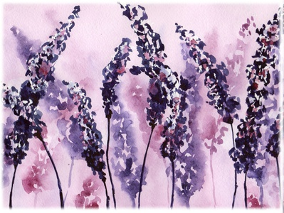 Lavender. Watercolor set.