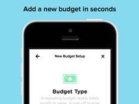 Pennies for iPhone – Budget Setup Screen